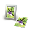 Fotopapier Inkjet Premium 10x15cm 250g weiß seidenmatt Zweckform C2552-50 (PACK=50 BLATT) Produktbild Additional View 1 S