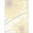 Motiv-Papier Inkjet+Laser+Kopier A4 90g Design Finesse Sigel DP465 (PACK=25 BLATT) Produktbild