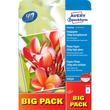 Fotopapier Inkjet Premium A4 250g weiß high-glossy Zweckform 2739 (PACK=40 BLATT) Produktbild
