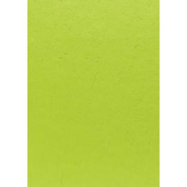Maulbeerbaumpapier 55x40cm 90g grasgrün Heyda 20-4722054 Produktbild