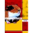 Heft starker Deckel A5 Lineatur 4 4.Schuljahr liniert 16Blatt 80g holzfrei weiß Landré 100050070 Produktbild Additional View 1 S