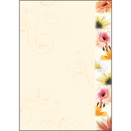 Motiv-Papier Inkjet+Laser+Kopier A4 90g Design Flowerstyle Sigel DP788 (PACK=50 BLATT) Produktbild