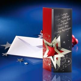 Weihnachts-Faltkarten inkl. Umschläge DIN lang 220g+100g Pleasure Sigel DS012 (PACK= JE 10 STÜCK) Produktbild
