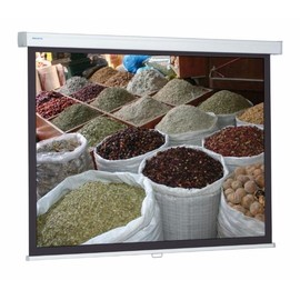 Projektionsleinwand ProScreen CSR Stativ 115x180cm Tuch mattweiß 5958000000 Produktbild