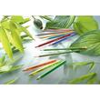 Farbstifte GREENcolors sortiert Stabilo 6019/2-181 (PACK=18 STÜCK) Produktbild Additional View 4 S