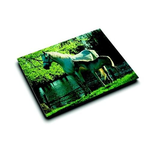 Schreibunterlage Motiv-Poster Pferd und Fohlen am See 40x53cm Läufer 46645 Produktbild Front View L