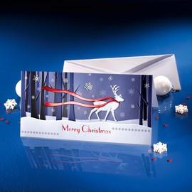 Weihnachts-Faltkarten inkl. Umschläge DIN lang 220g Winter's Eve Sigel DS017 (PACK= JE 10 STÜCK) Produktbild