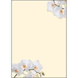Motiv-Papier Inkjet+Laser+Kopier A4 90g Design White Orchid Sigel DP904 (PACK=50 BLATT) Produktbild