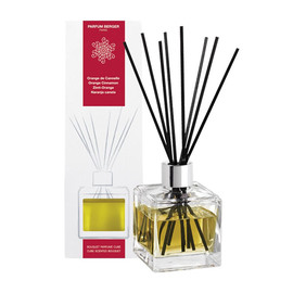 Parfum Berger Bouquet Parfumé Cube Orange de Cannelle 6002 Produktbild