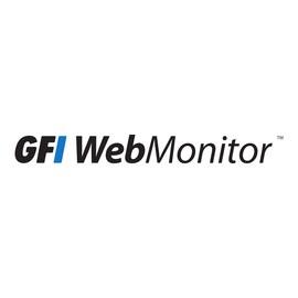 GFI WebMonitor 2011 for Microsoft ISA Server WebFilter Edition - Erneuerung der Abonnement-Lizenz (3 Jahre) - 1 Produktbild