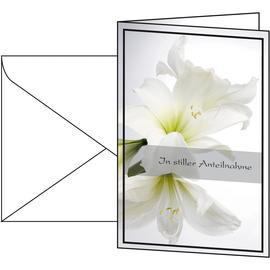 Trauer-Karte 115x170mm 220g Weiße Amaryllis inkl. Umschläge Sigel DS006 (PACK = JE 10 STÜCK) Produktbild