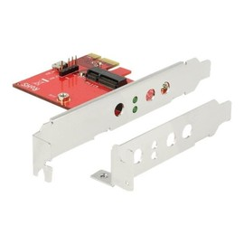 DeLOCK - Speicher-Controller - M.2 - M.2 Card Low-Profile - PCIe x1, USB 2.0 Produktbild