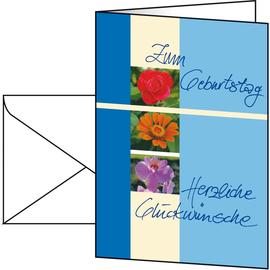 Glückwunsch-Karten inkl. Umschläge A6 220g Geburtstag Sigel DS610 (PACK= JE 10 STÜCK) Produktbild
