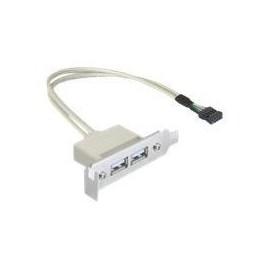DeLOCK Slot bracket - USB-Kabel - USB (W) bis 9-poliger USB-Header (W) - USB 2.0 - 50 cm Produktbild