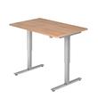 Schreibtisch elektrisch verstellbar 120x80cm nussbaum BestStandard Produktbild