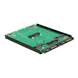 DeLOCK Converter 2 x SATA 22 pin > Dualport 2 x M.2 / 2 x mSATA - Speicher-Controller - mSATA, M.2 - M.2 Produktbild