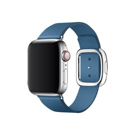 APPLE 40mm Cape Cod Blue Band - L Produktbild