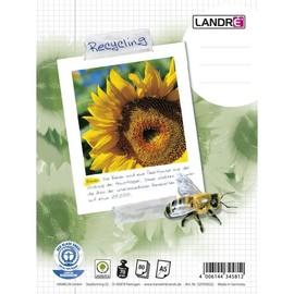 Collegeblock A5 kariert 6-fach Lochung Rand links 80Blatt 60g Recycling Landré 100050114 Produktbild