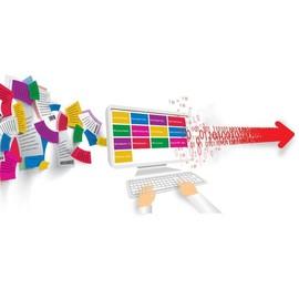 KODAK Capture Pro Software - Lizenz + 5 Years Software Assurance and Start-Up Assistance - 1 Benutzer - Group E - Win Produktbild