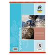 Spiralschulblock A5 Lineatur 5 kariert 40Blatt 70g holzfrei weiß Staufen-Demmler 42205 Produktbild Additional View 1 S
