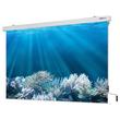 Leinwand Cineroll Kurbel 180x180cm Tuch mattweiß Magnetoplan 6201214 Produktbild