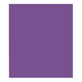 Clairefontaine Geschenkpapier 95711C 70cmx3m violett Produktbild