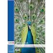 Zeichenblock A3 perforiert 10Blatt Landré 4 Tier-Motive Produktbild Additional View 3 S