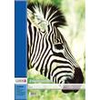 Zeichenblock A3 perforiert 10Blatt Landré 4 Tier-Motive Produktbild Additional View 4 S