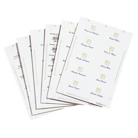 Einsteckschilder BADGEMAKER für 30x60mm Namensschilder weiß Durable 1451-02 (PACK=540 STÜCK) Produktbild