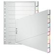 Register Blanko mit Taben A4 schräg 238x297mm 10-teilig grau Plastik Leitz 1270-00-00 Produktbild