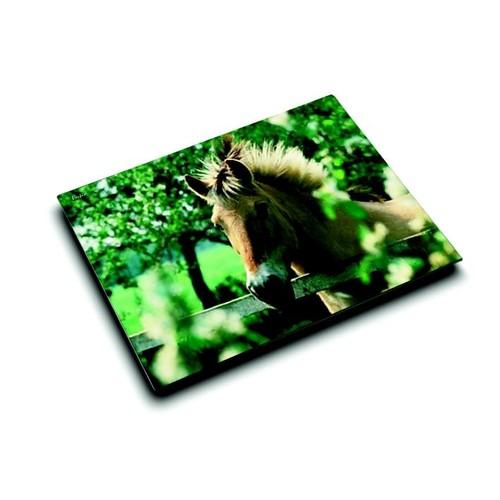Schreibunterlage Motiv-Poster Pferd am Weidezaun 40x53cm Läufer 46640 Produktbild Front View L