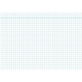 Karteikarten A4 kariert weiß holzfrei RNK 11484 (PACK=100 STÜCK) Produktbild