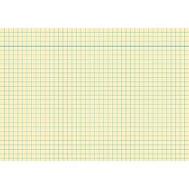 Karteikarten A5 kariert gelb holzfrei RNK 11485 (PACK=100 STÜCK) Produktbild