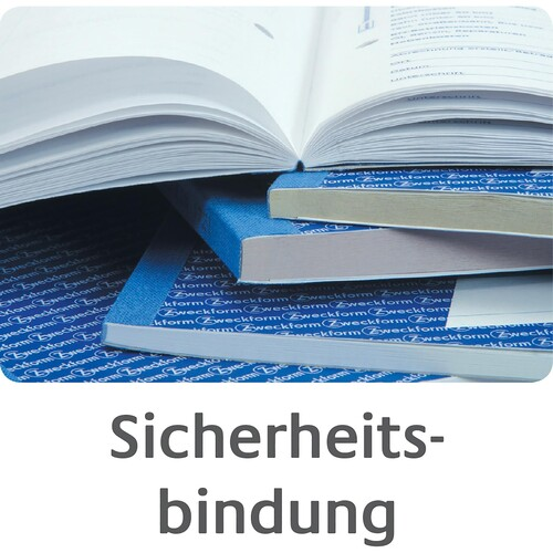 Zweckform Kassenbuch 426 Steuerschiene 300 EDV Blaupapier 100 Blatt A4