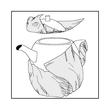 Packseide 50x75cm 28g/m² recycling Nips 118730201 (PACK=250 BOGEN) Produktbild Additional View 1 S