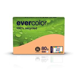 Kopierpapier Evercolor Pastell A4 80g lachs recycling (PACK=500 BLATT) Produktbild