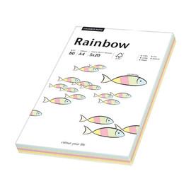 Kopierpapier Rainbow Pastell A4 80g 5 Farben sortiert 88043187 (PACK=100 BLATT) Produktbild