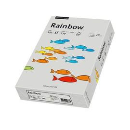 Kopierpapier Rainbow Pastell 96 A4 120g grau 88042810 (PACK=250 BLATT) Produktbild
