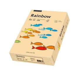 Kopierpapier Rainbow Pastell 40 A4 160g lachs 88042505 (PACK=250 BLATT) Produktbild