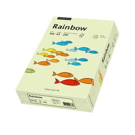 Kopierpapier Rainbow Pastell 72 A4 160g hellgrün 88042593 (PACK=250 BLATT) Produktbild