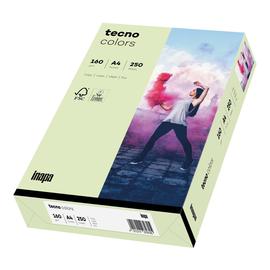Kopierpapier tecno colors 72 A4 160g hellgrün Pastellfarben (PACK=250 BLATT) Produktbild
