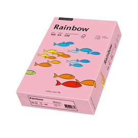 Kopierpapier Rainbow Pastell 55 A4 160g rosa 88042549 (PACK=250 BLATT) Produktbild