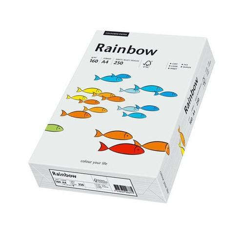 Kopierpapier Rainbow Pastell 93 A4 160g hellgrau 88042791 (PACK=250 BLATT) Produktbild Front View L