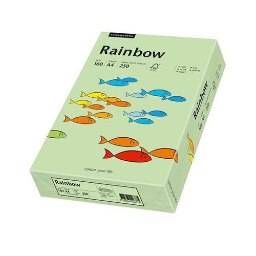 Kopierpapier Rainbow Pastell 75 A4 160g mittelgrün 88042637 (PACK=250 BLATT) Produktbild Front View L