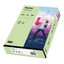 Kopierpapier tecno colors 75 A4 160g mittelgrün Pastellfarben (PACK=250 BLATT) Produktbild