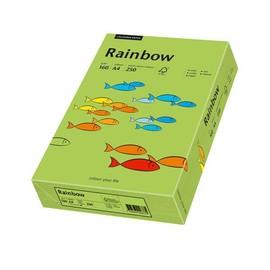 Kopierpapier Rainbow Intensiv 76 A4 160g grün 88042659 (PACK=250 BLATT) Produktbild