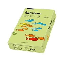 Kopierpapier Rainbow Intensiv 74 A4 160g leuchtend grün 88042615 (PACK=250 BLATT) Produktbild