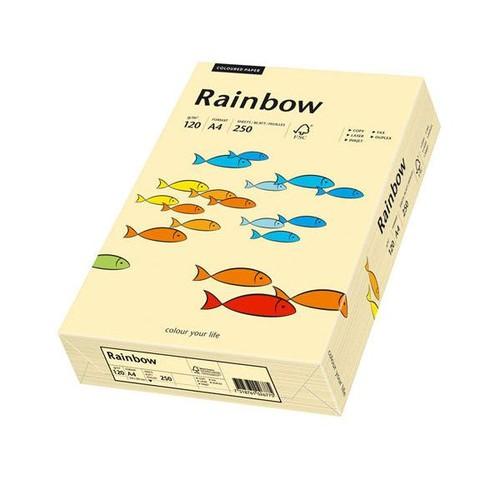Kopierpapier Rainbow Pastell 06 A4 120g chamois 88042280 (PACK=250 BLATT) Produktbild Front View L