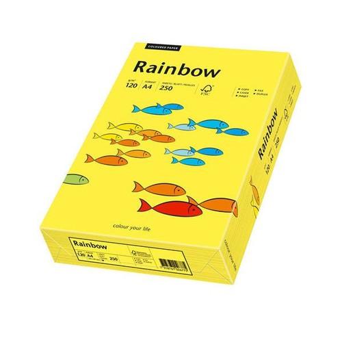 Kopierpapier Rainbow Pastell 14 A4 120g mittelgelb 88042324 (PACK=250 BLATT) Produktbild Front View L