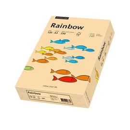 Kopierpapier tecno colors 40 A4 120g lachs Pastellfarben (PACK=250 BLATT) Produktbild